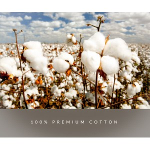 BOXY Premium Cotton Round Neck T-shirt - Black